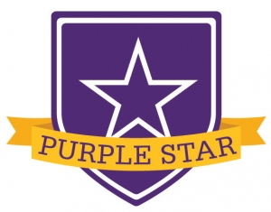 military purple star