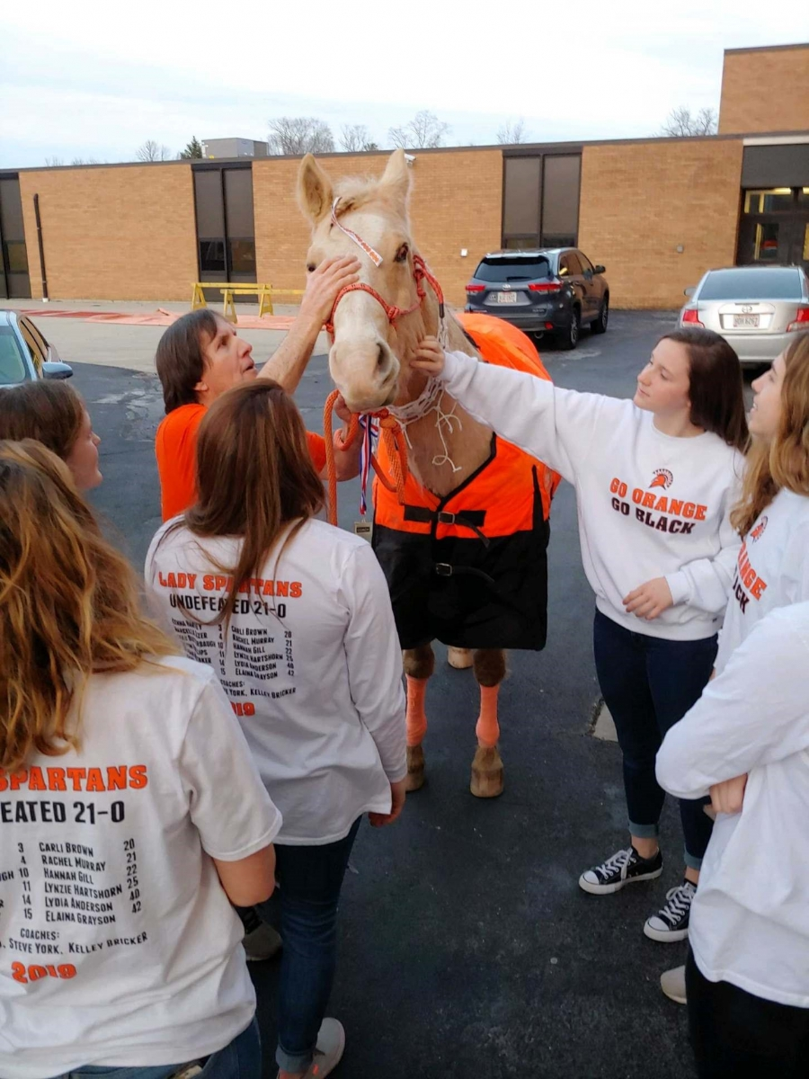 horse and girls petting it