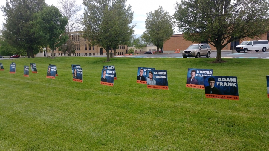 yard signs in a row