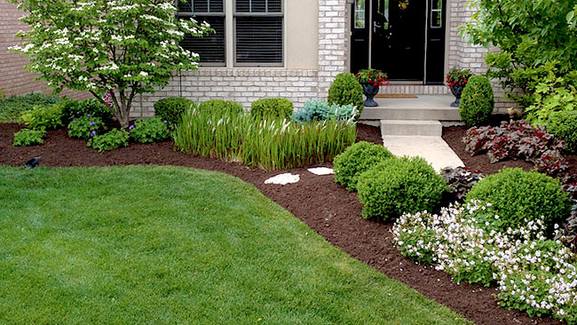 mulch bed with landscaping