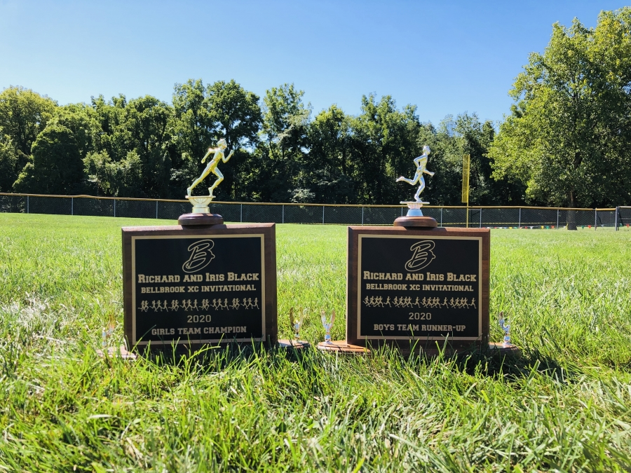 trophies sitting in the grass