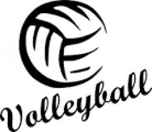 black and white volleyball image