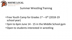 youth wrestling announcement